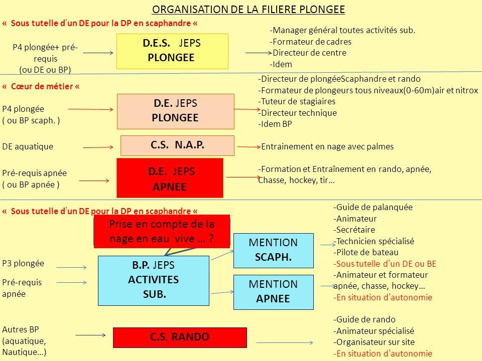 ORGANISATION DE LA FILIERE PLONGEE