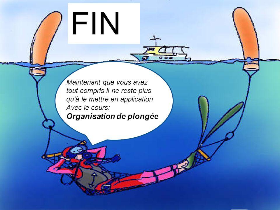 FIN Organisation de plongée