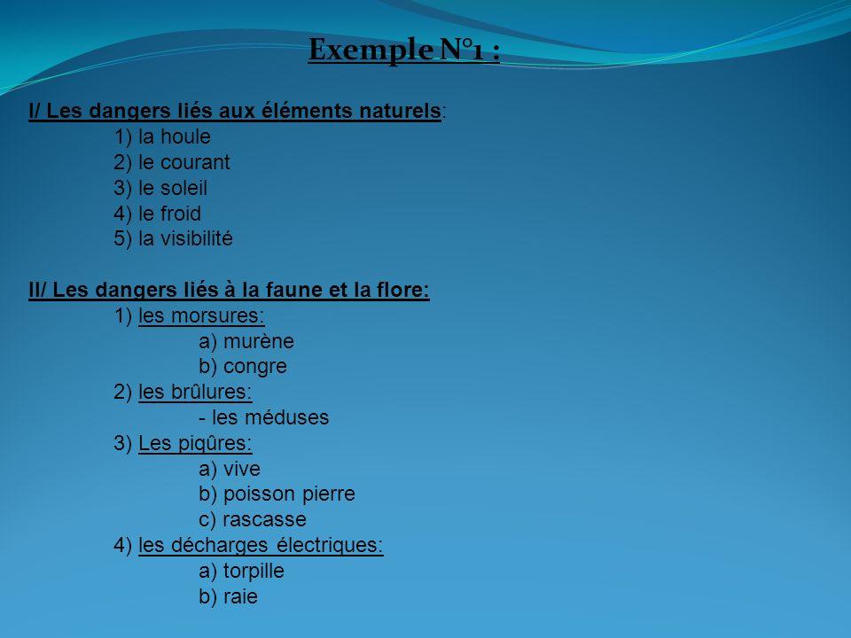 Exemple N°1 : I/ Les dangers liés aux éléments naturels: 1) la houle 2) le courant 3) le soleil 4) le froid 5) la visibilité.