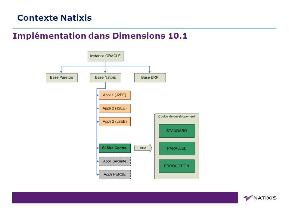Implémentation dans Dimensions 10.1