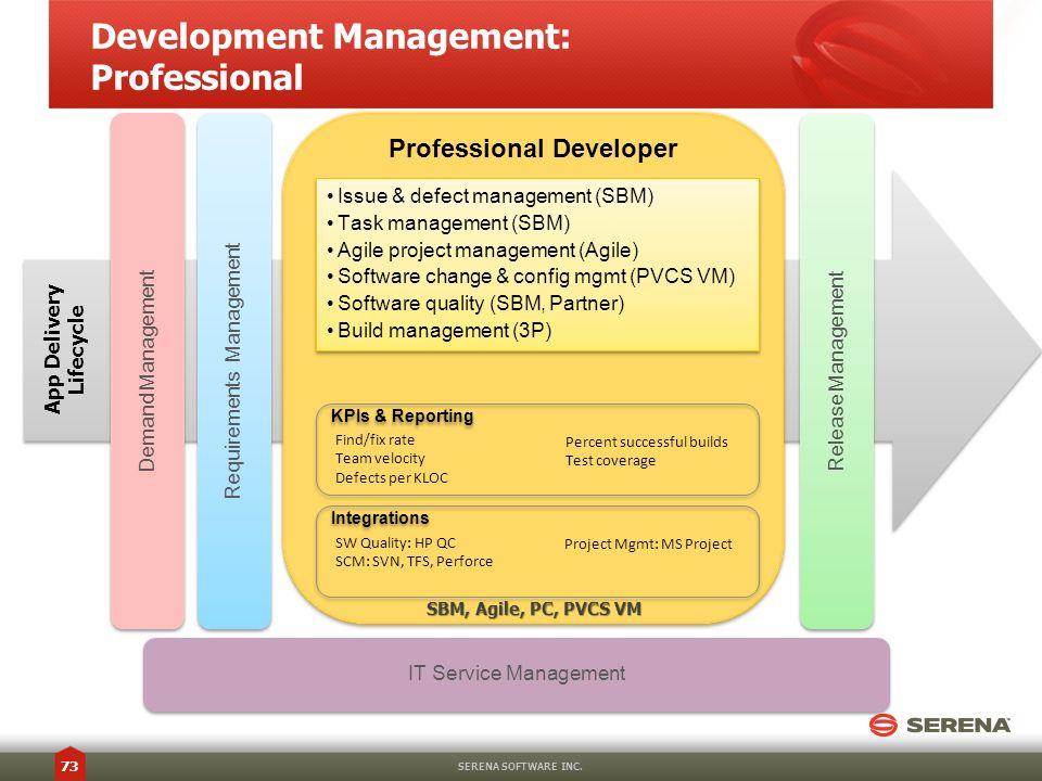 Development Management: Professional
