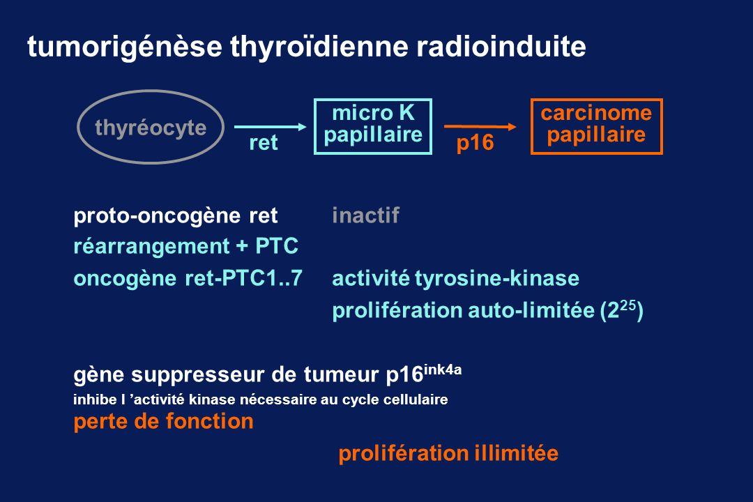 tumorigénèse thyroïdienne radioinduite