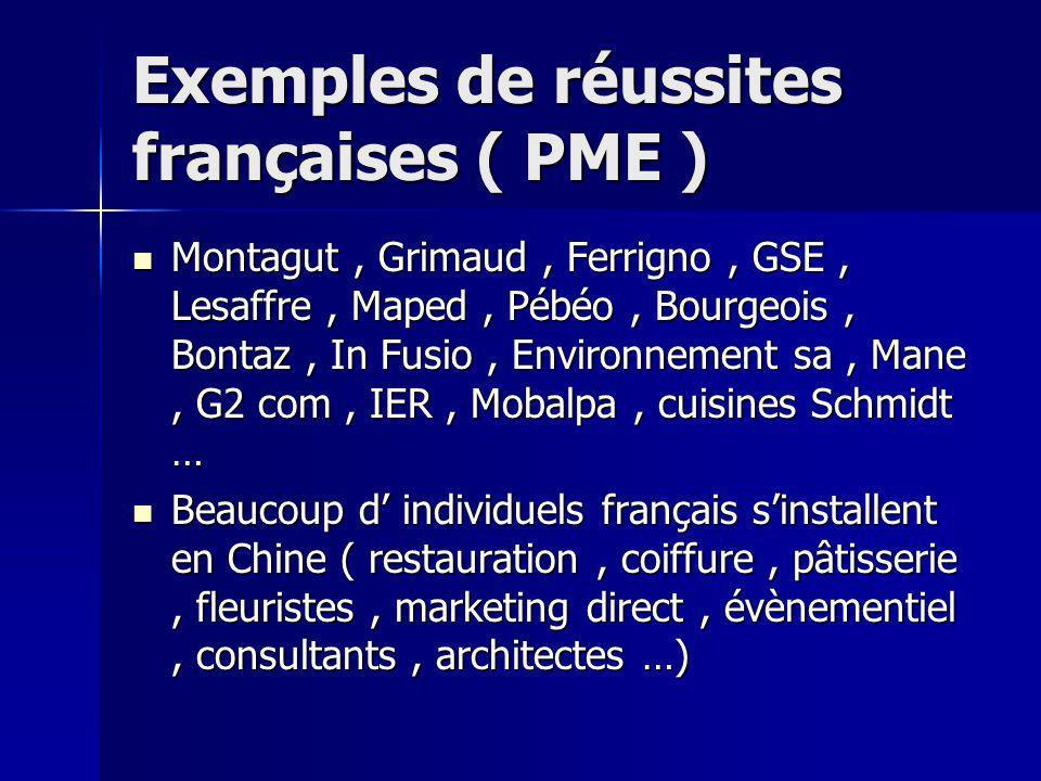 Exemples de réussites françaises ( PME )