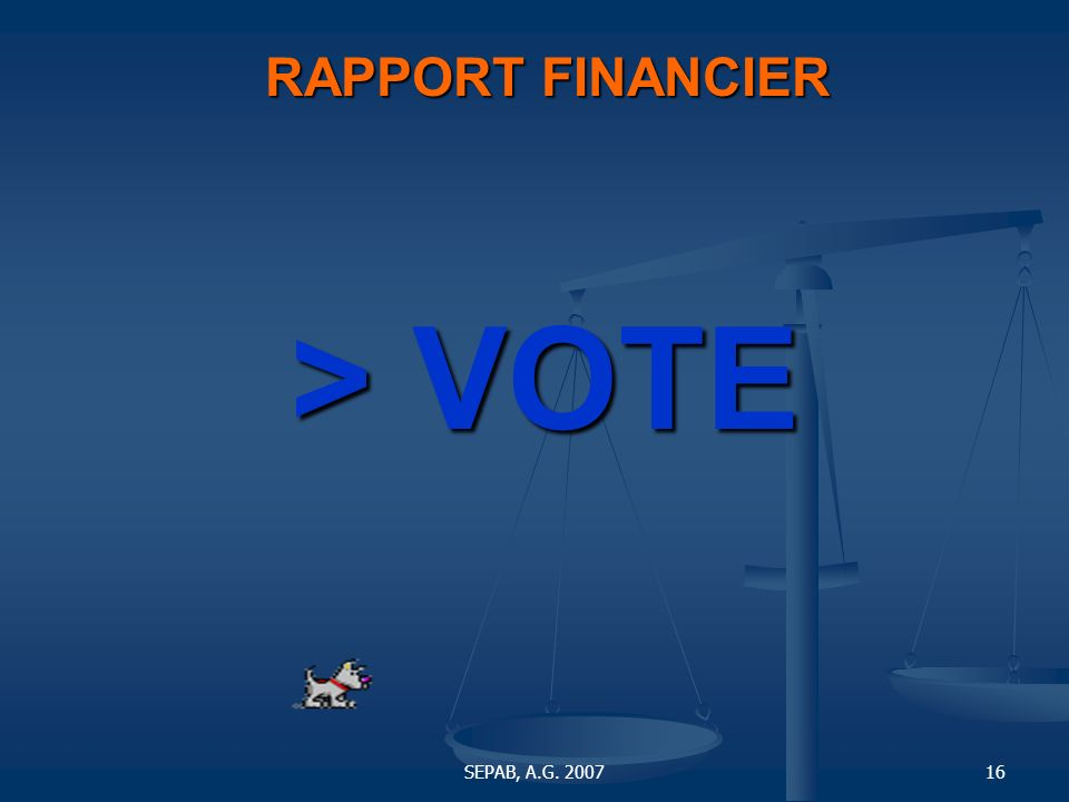 RAPPORT FINANCIER > VOTE SEPAB, A.G. 2007