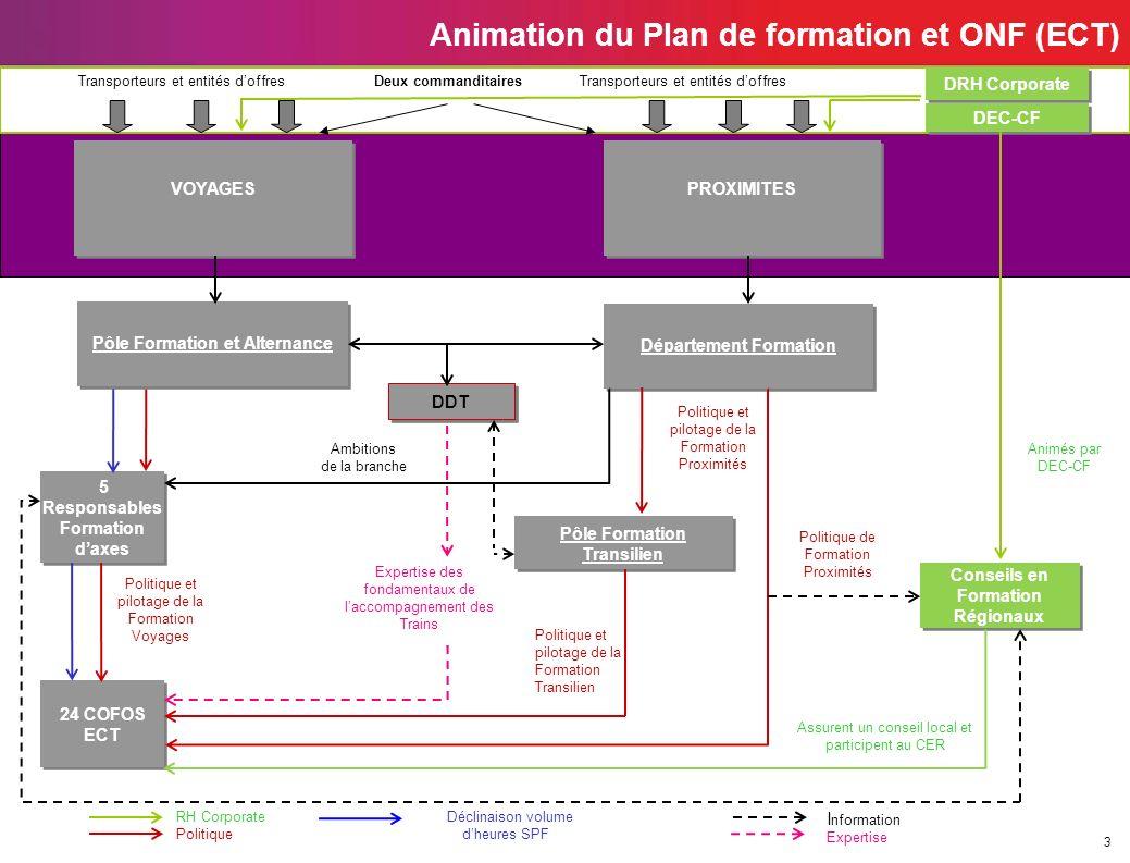 Animation du Plan de formation et ONF (ECT)