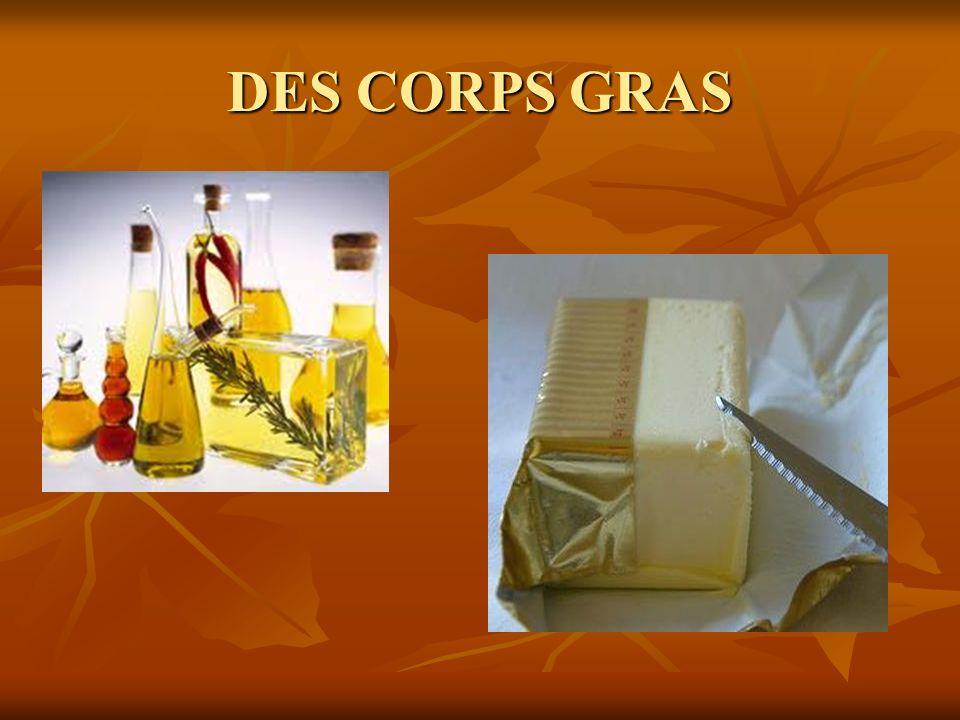 DES CORPS GRAS