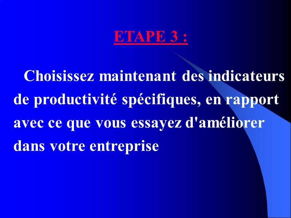 ETAPE 3 : Choisissez maintenant des indicateurs de productivité spécifiques, en rapport avec ce que vous essayez d améliorer dans votre entreprise.