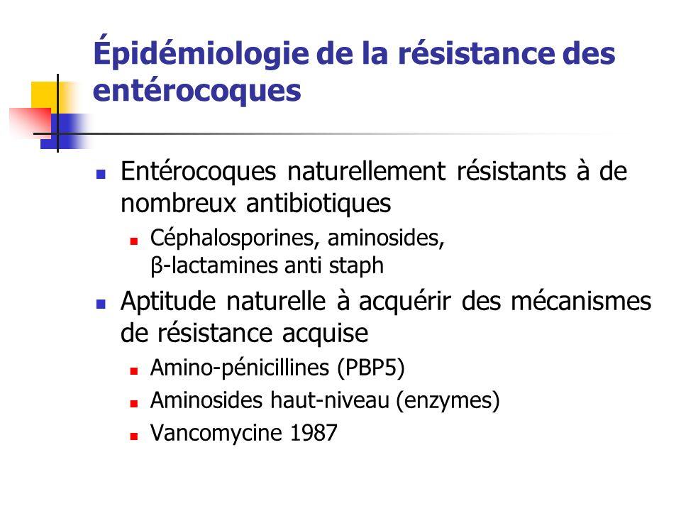 Épidémiologie de la résistance des entérocoques