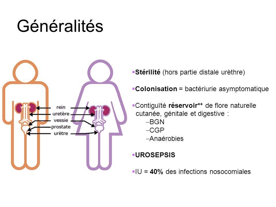 Généralités Stérilité (hors partie distale urèthre)
