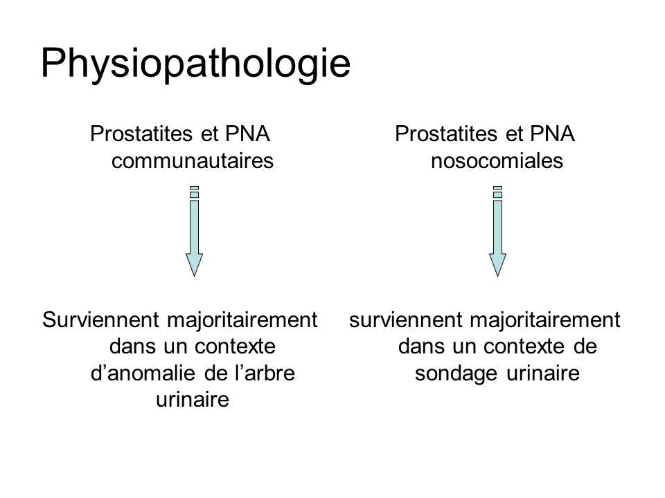 Physiopathologie Prostatites et PNA communautaires