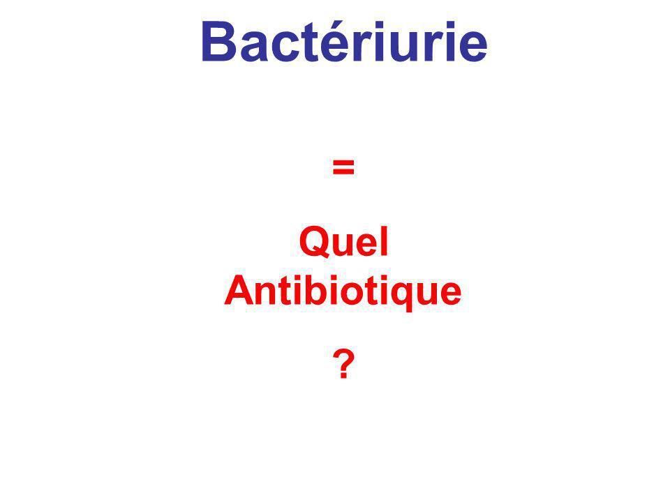 Bactériurie Bactérie = Quel Antibiotique