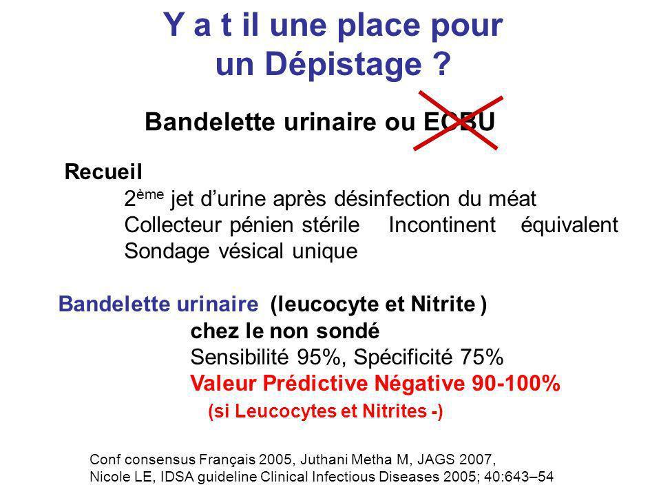 Bandelette urinaire ou ECBU