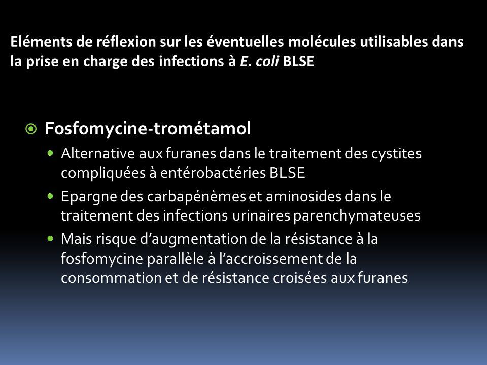 Fosfomycine-trométamol