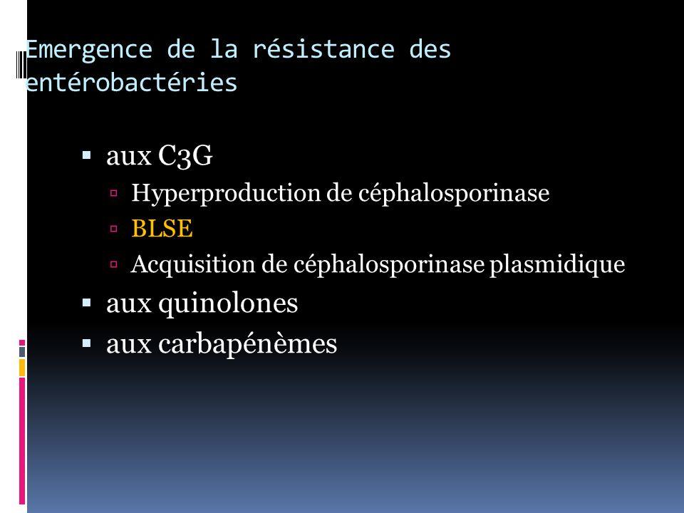 Emergence de la résistance des entérobactéries