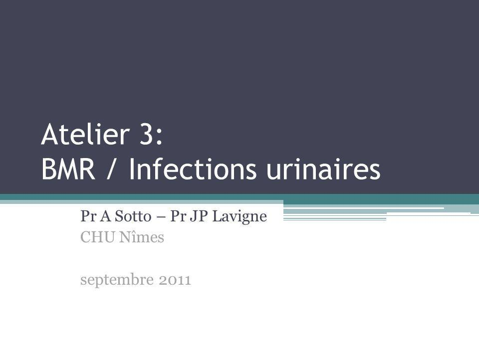 Atelier 3: BMR / Infections urinaires