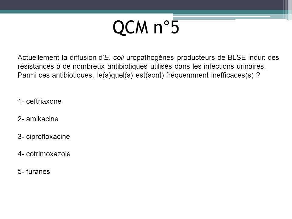 QCM n°5