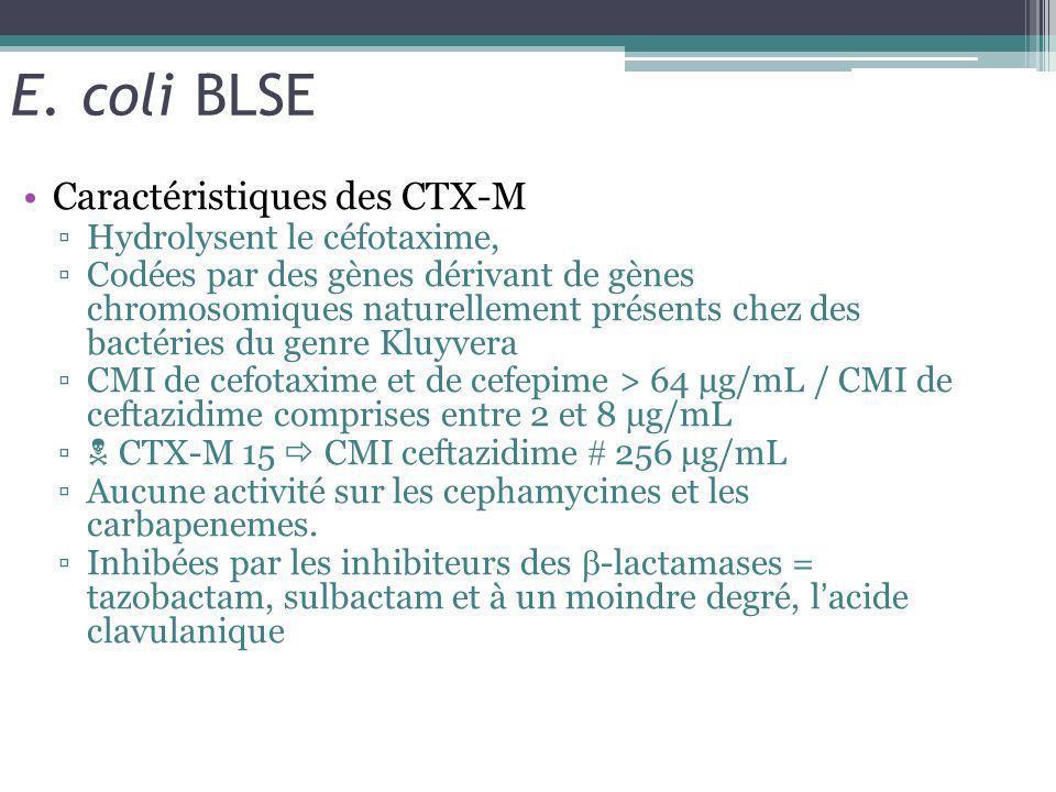 E. coli BLSE Caractéristiques des CTX-M Hydrolysent le céfotaxime,