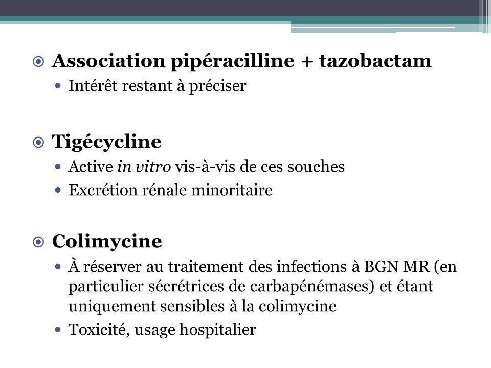 Association pipéracilline + tazobactam