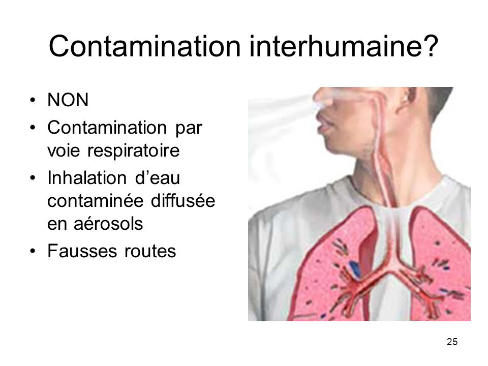 Contamination interhumaine