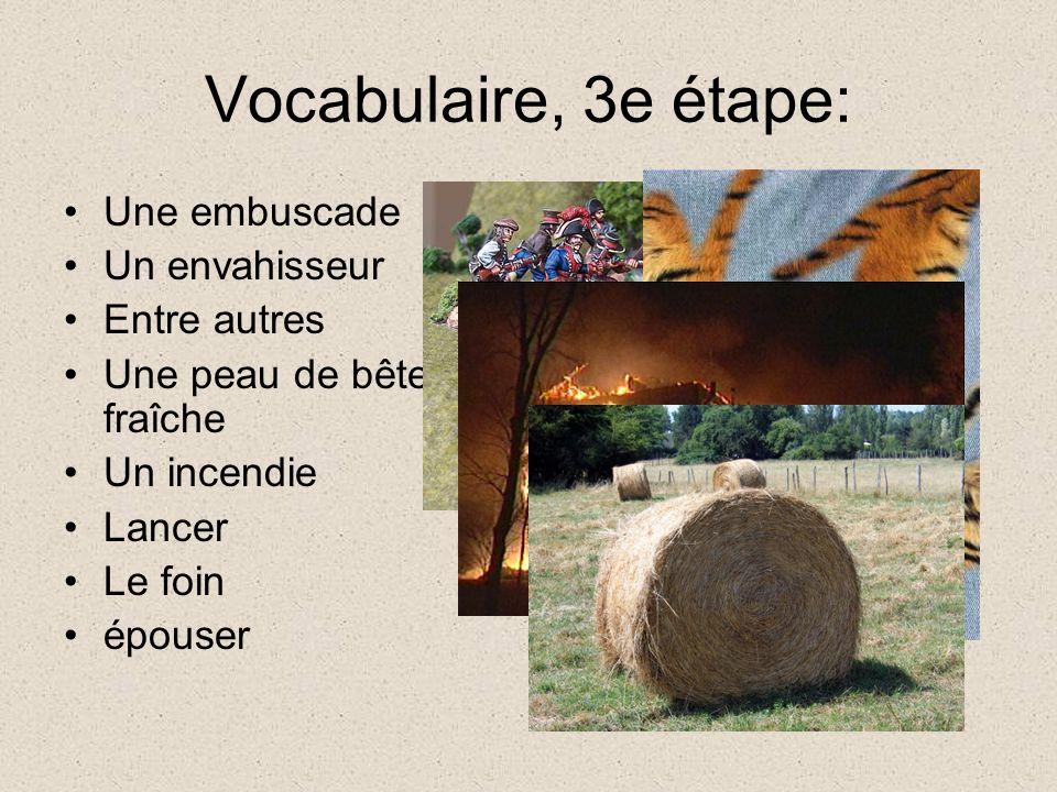 Vocabulaire, 3e étape: Une embuscade Un envahisseur Entre autres