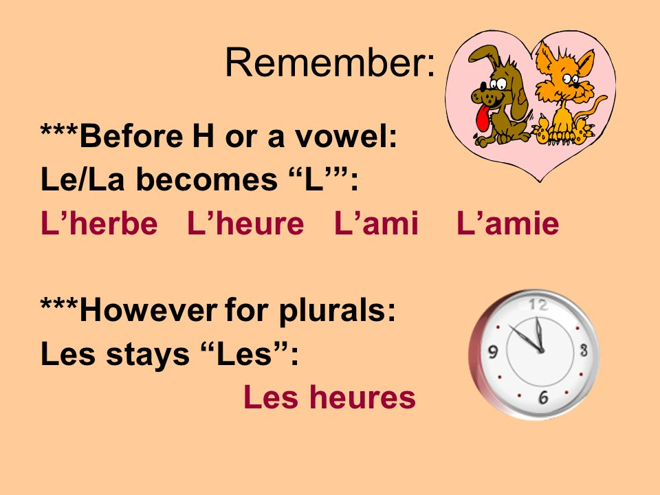 Remember: ***Before H or a vowel: Le/La becomes L' :