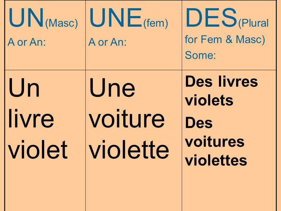 DES(Plural for Fem & Masc) Un livre violet Une voiture violette