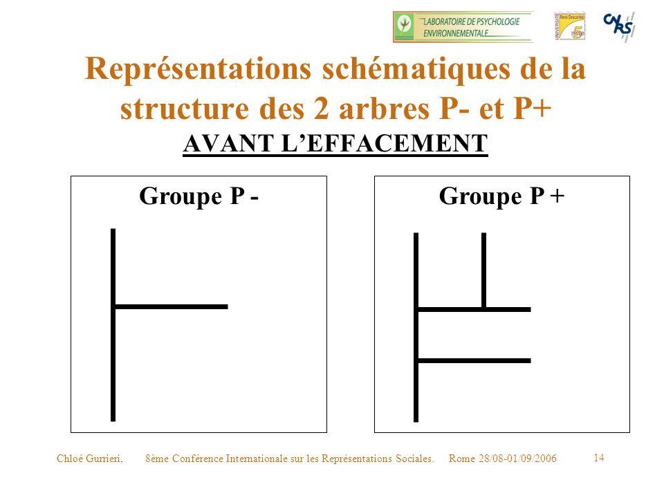 Représentations schématiques de la structure des 2 arbres P- et P+ AVANT L'EFFACEMENT