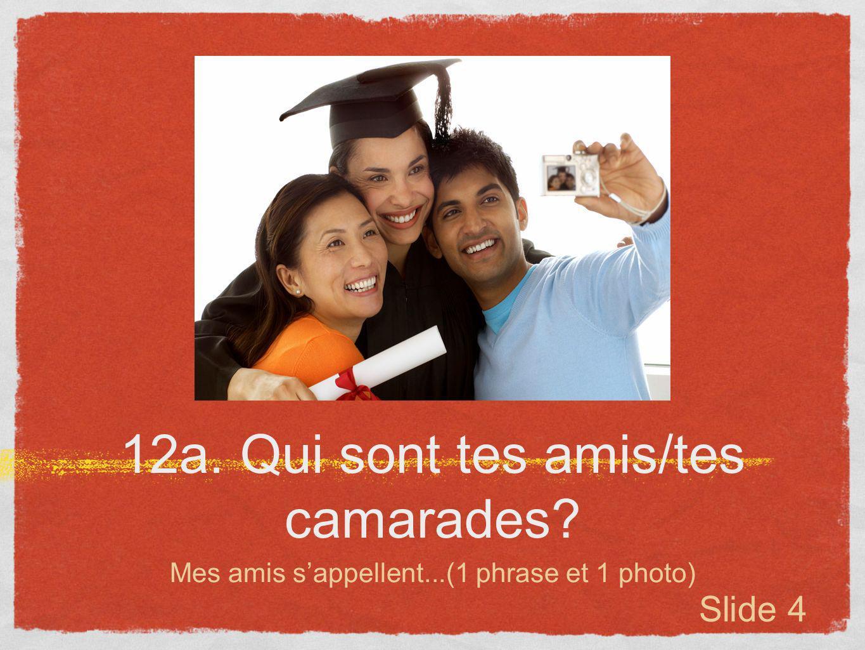 12a. Qui sont tes amis/tes camarades