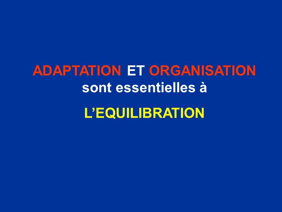 ADAPTATION ET ORGANISATION sont essentielles à