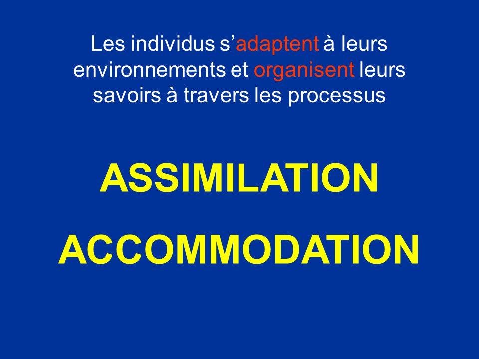 ASSIMILATION ACCOMMODATION