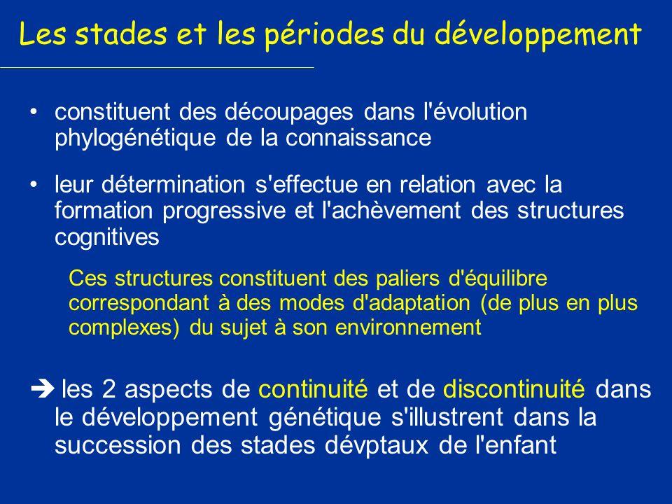 Les stades et les périodes du développement