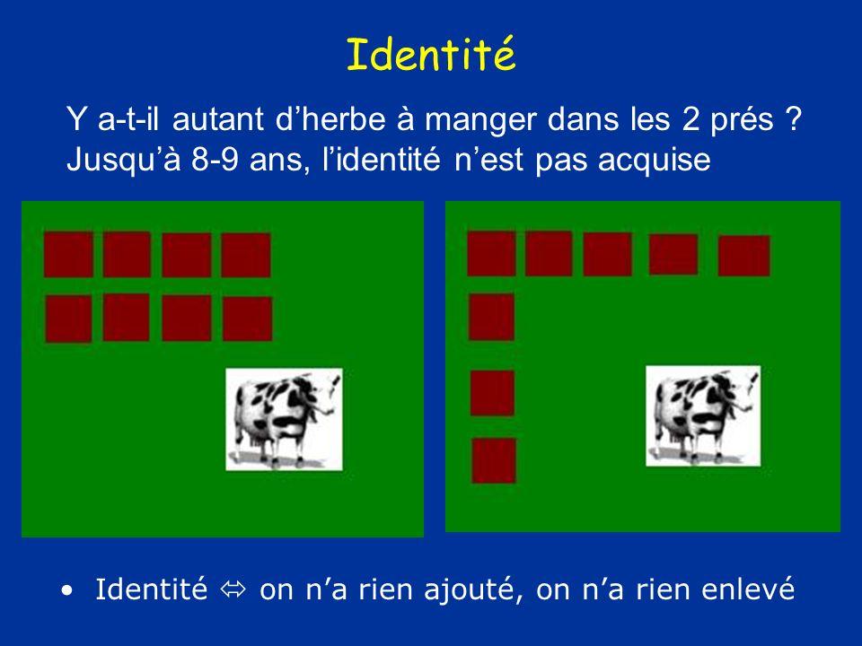 Identité Y a-t-il autant d'herbe à manger dans les 2 prés Jusqu'à 8-9 ans, l'identité n'est pas acquise.