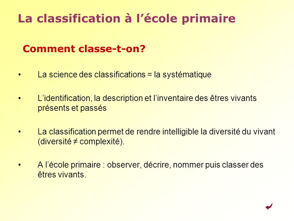 La classification à l'école primaire