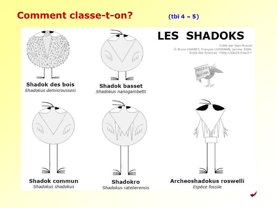 Comment classe-t-on (tbi 4 – 5)