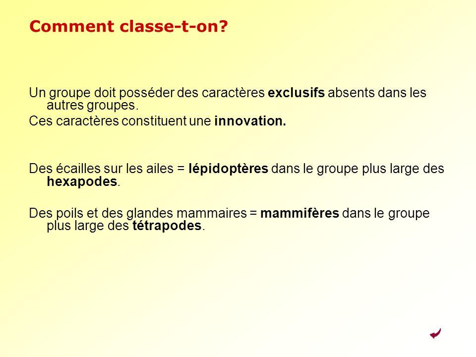 Comment classe-t-on Un groupe doit posséder des caractères exclusifs absents dans les autres groupes.
