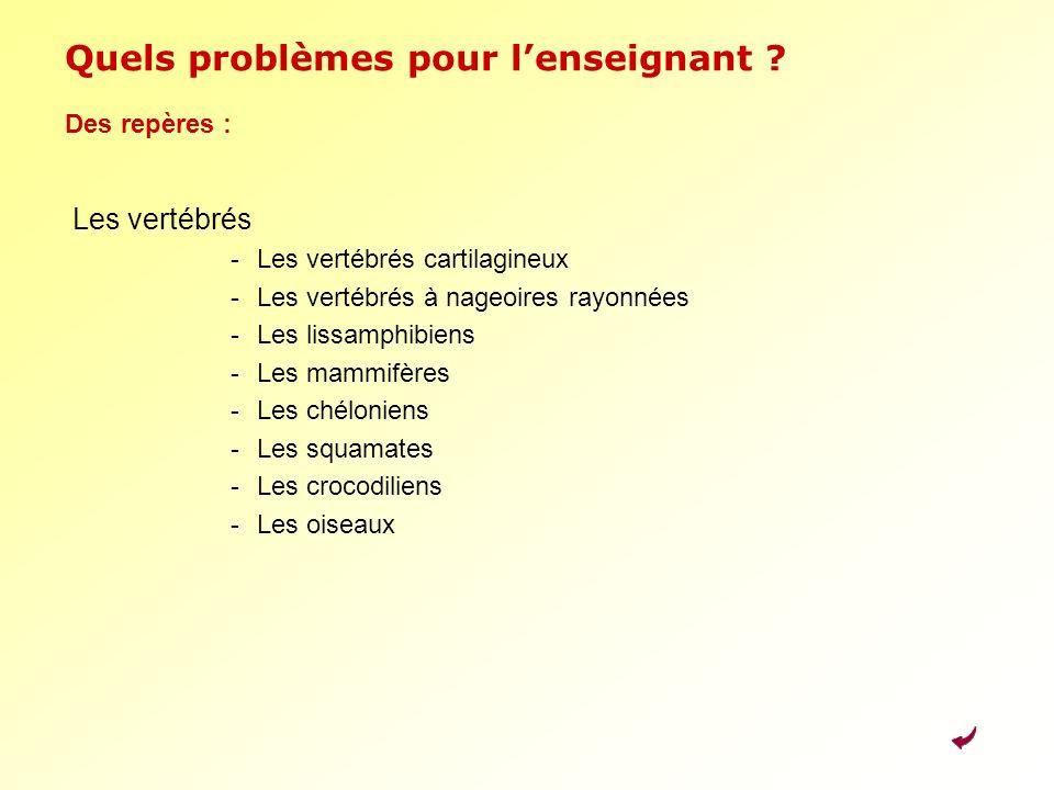 Quels problèmes pour l'enseignant
