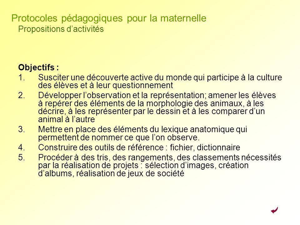 Protocoles pédagogiques pour la maternelle Propositions d'activités