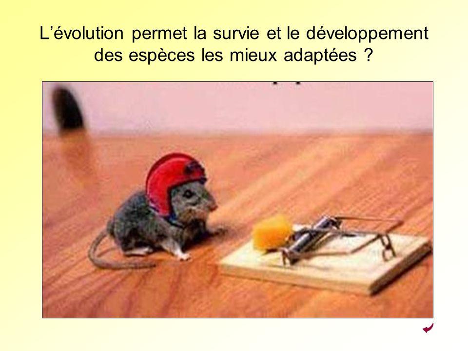 L'évolution permet la survie et le développement des espèces les mieux adaptées
