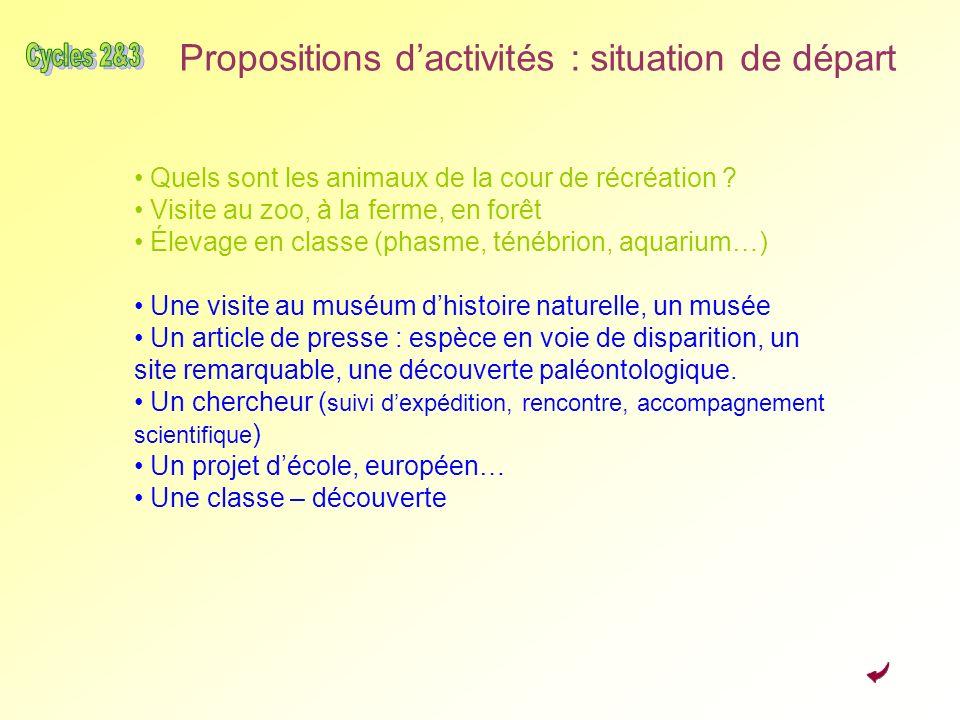 Propositions d'activités : situation de départ