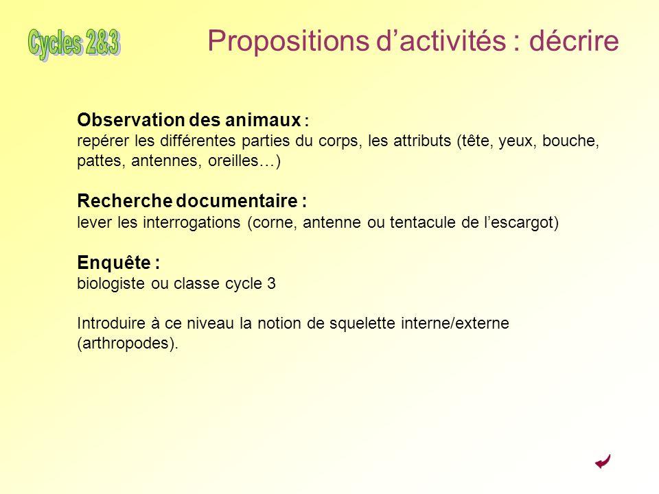 Propositions d'activités : décrire