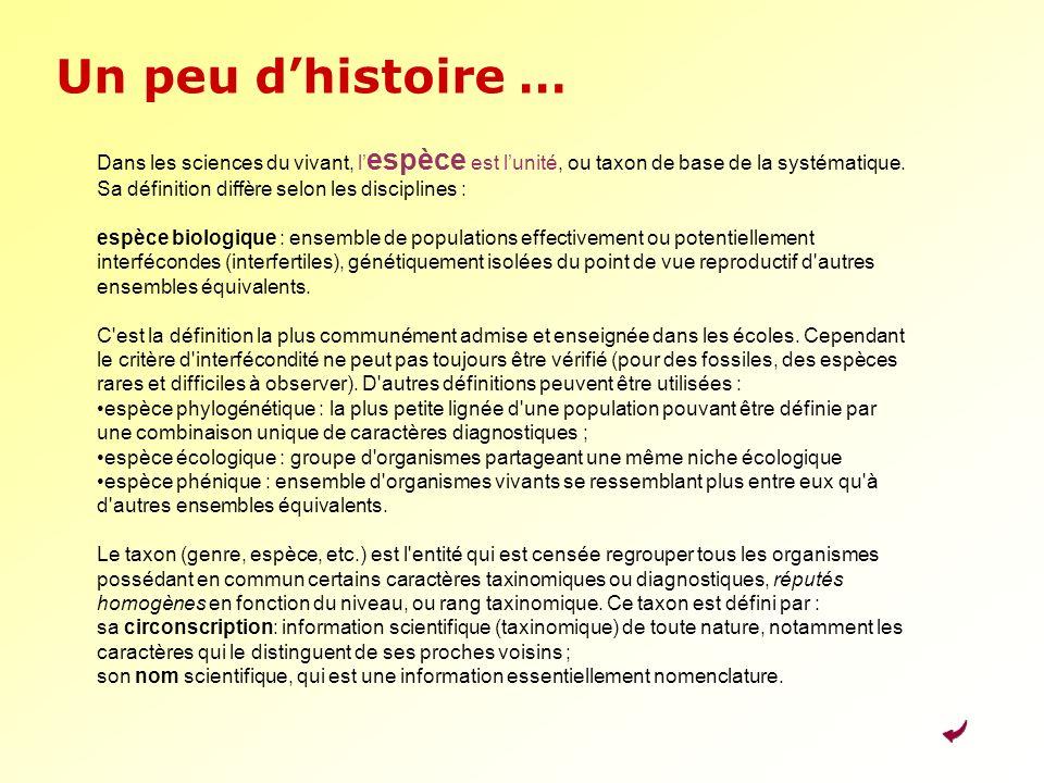 La classification du vivant l cole l mentaire ppt t l charger - Definition d une histoire ...