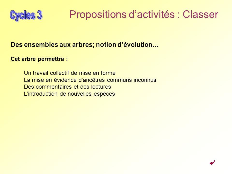 Propositions d'activités : Classer