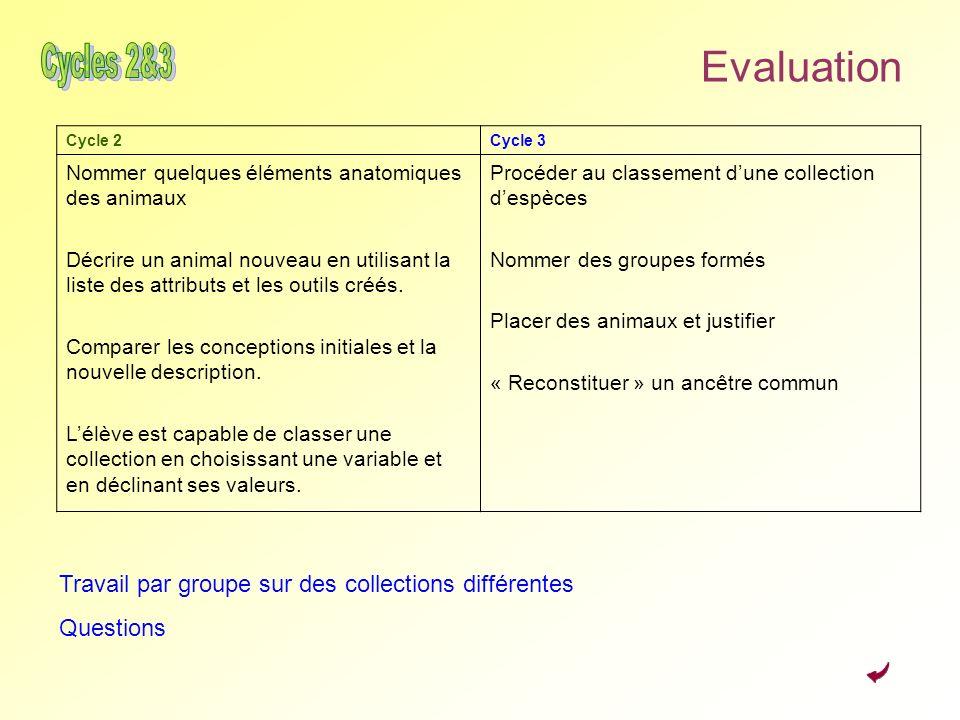 Evaluation Cycles 2&3. Cycle 2. Cycle 3. Nommer quelques éléments anatomiques des animaux.