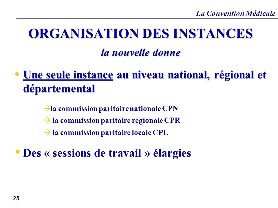 ORGANISATION DES INSTANCES