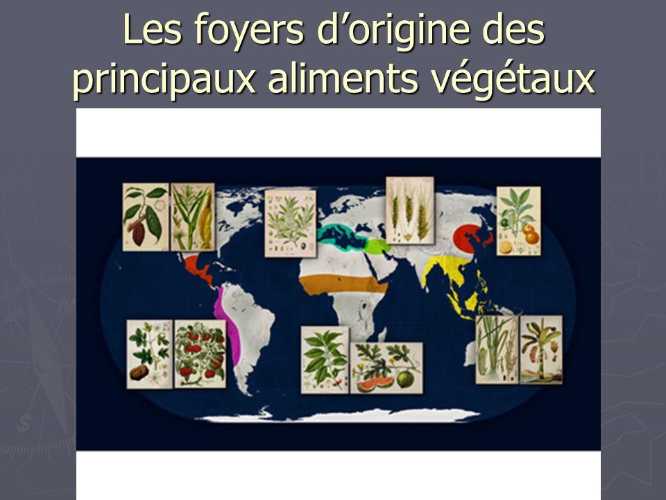 Les foyers d'origine des principaux aliments végétaux