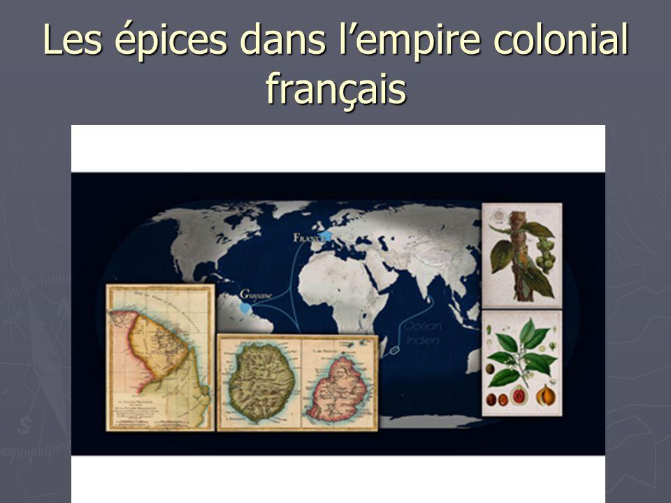 Les épices dans l'empire colonial français