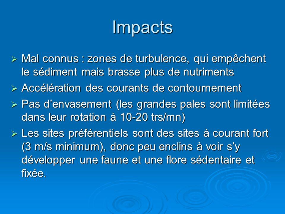 ImpactsMal connus : zones de turbulence, qui empêchent le sédiment mais brasse plus de nutriments. Accélération des courants de contournement.