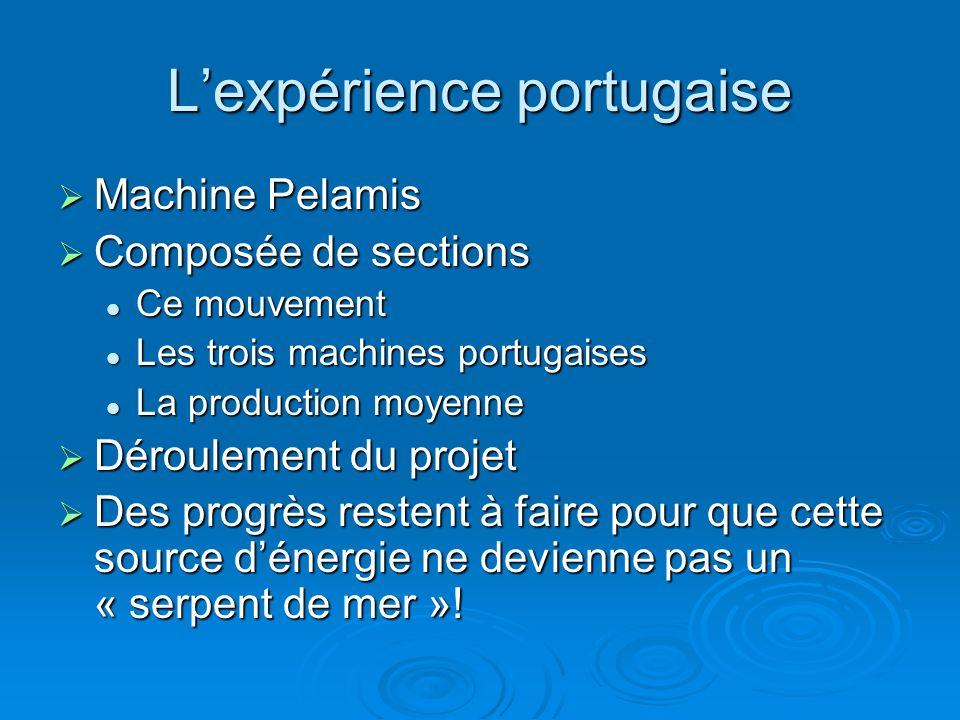 L'expérience portugaise