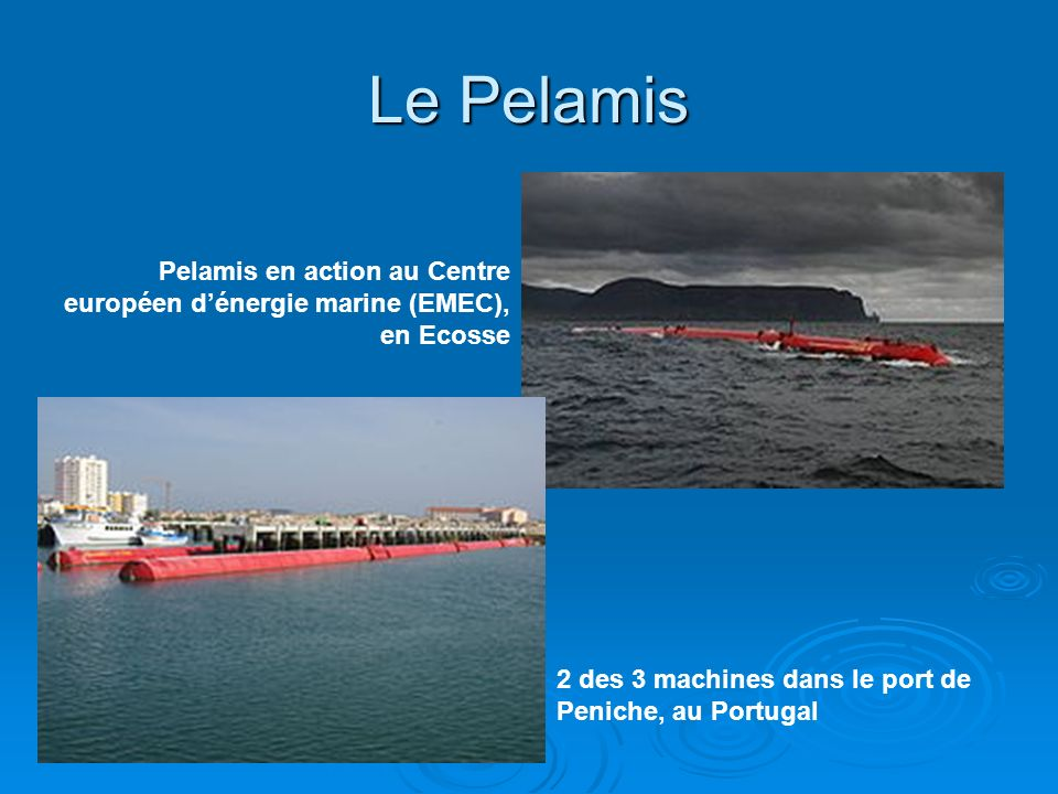 Le PelamisPelamis en action au Centre européen d'énergie marine (EMEC), en Ecosse.