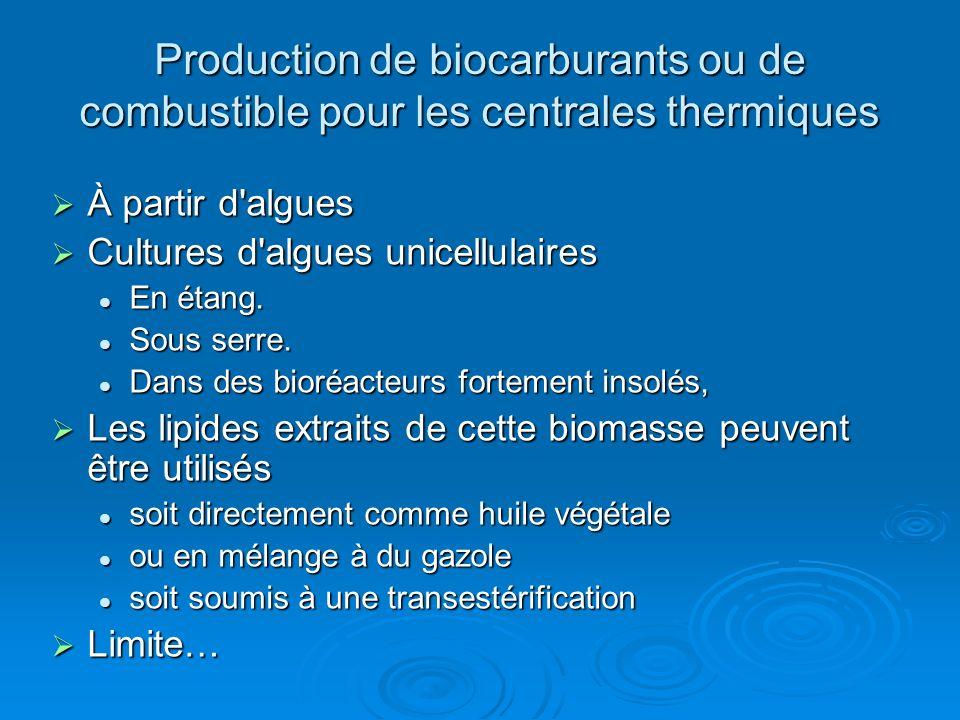 Production de biocarburants ou de combustible pour les centrales thermiques